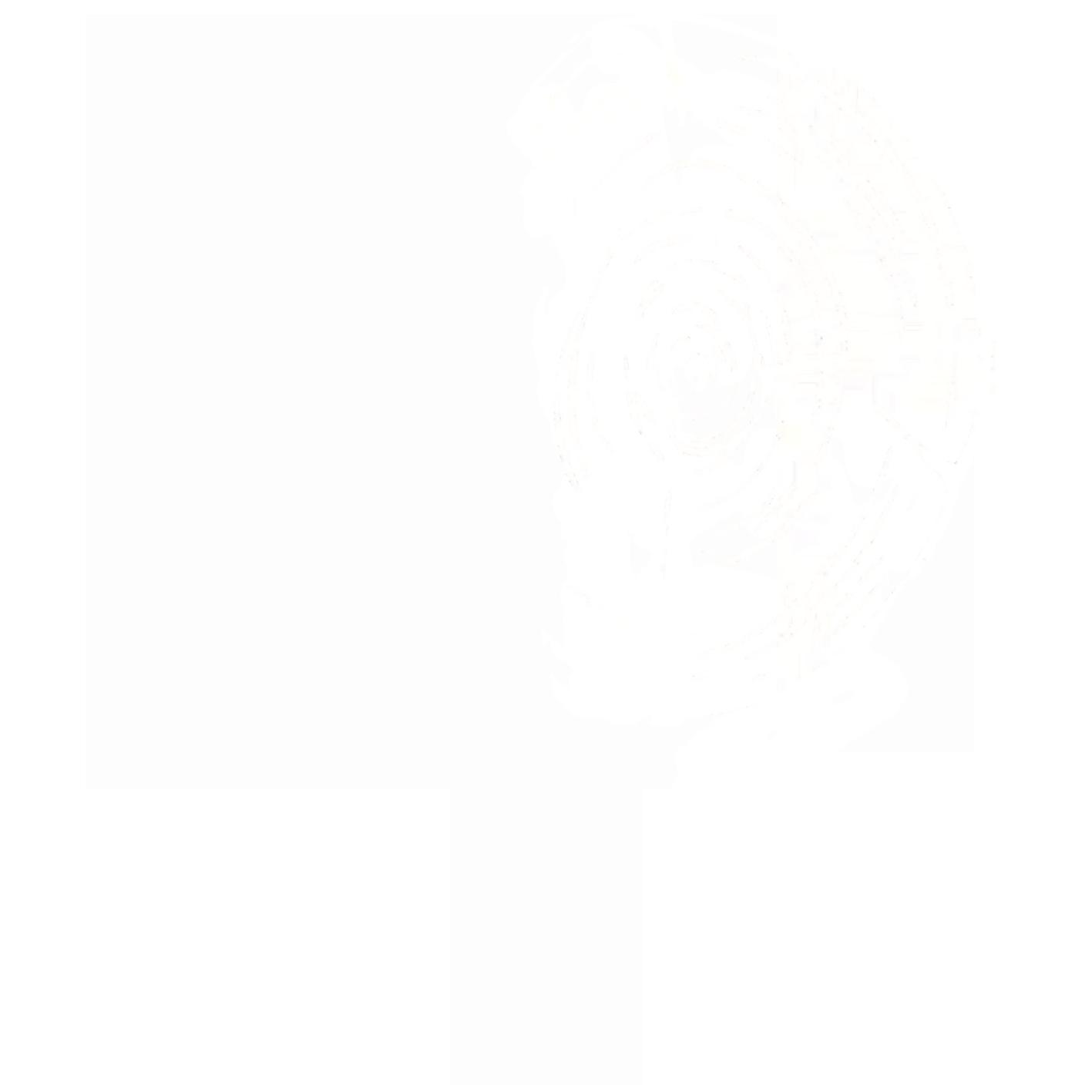 Baumpflege, Fällungen und ökologischer Holzbau in Bamberg, Bayreuth und Kulmbach